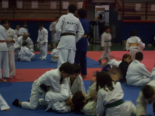 Foto Evento ¡Vive el Judo! del 17 de diciembre 2013